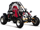 150cc_Single_seat_Off_Road_Buggy_2.jpg